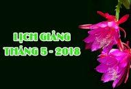 Lịch thuyết giảng tháng 5 – 2018