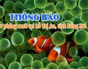 Thông báo – V/v phóng sanh tại hồ Trị An, tỉnh Đồng Nai