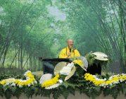 Thiền giữa đời thường