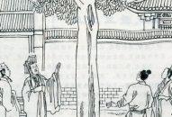Chuyện 33 – Vua ra lệnh đốn cây hái trái