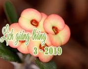 Lịch thuyết giảng tháng 03 – 2019