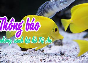 THÔNG BÁO – V/v phóng sanh tại hồ Trị An, tỉnh Đồng Nai 2019
