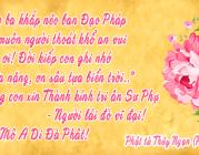 Thành kính tri ân Sư Phụ nhân ngày Nhà Giáo Việt Nam 20/11